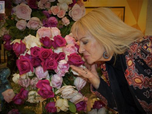 Le Bal Meilland … La Rose Belles Rives*****