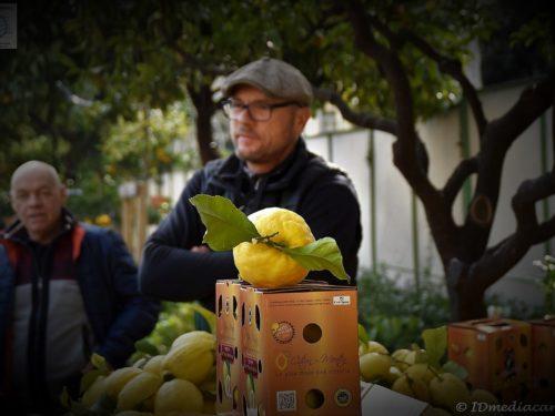 85ème Fête du Citron 2018 – Menton
