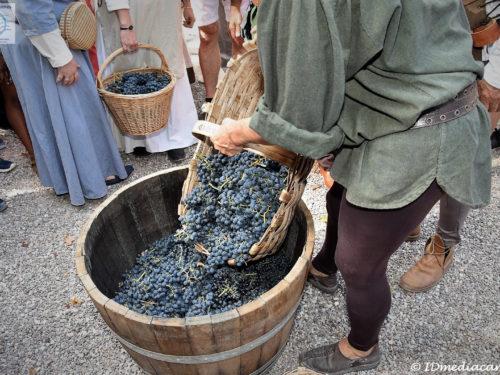 Journée des vendanges 2018 au Château Sainte Roseline