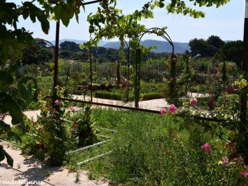 Hostellerie Bérard … Jardin des Senteurs & Aromaspa